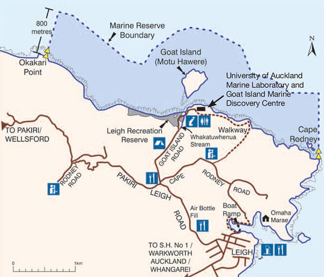 Goat Island Marine Reserve Snorkeling Map
