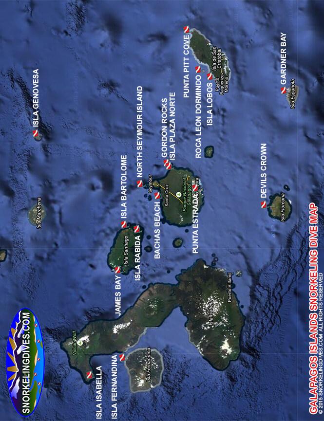 Isla Plaza Sur Snorkeling Map