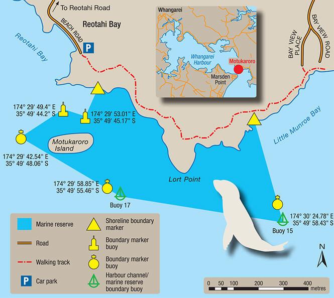 Whangarei Marine Reserve Snorkeling Map