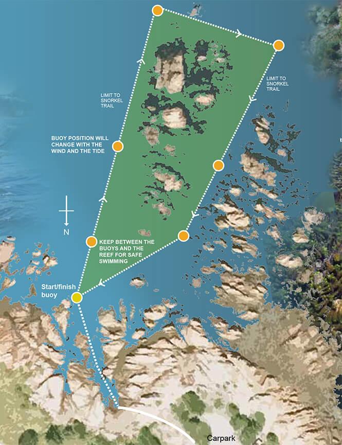 Taputeranga Marine Reserve Snorkeling Map