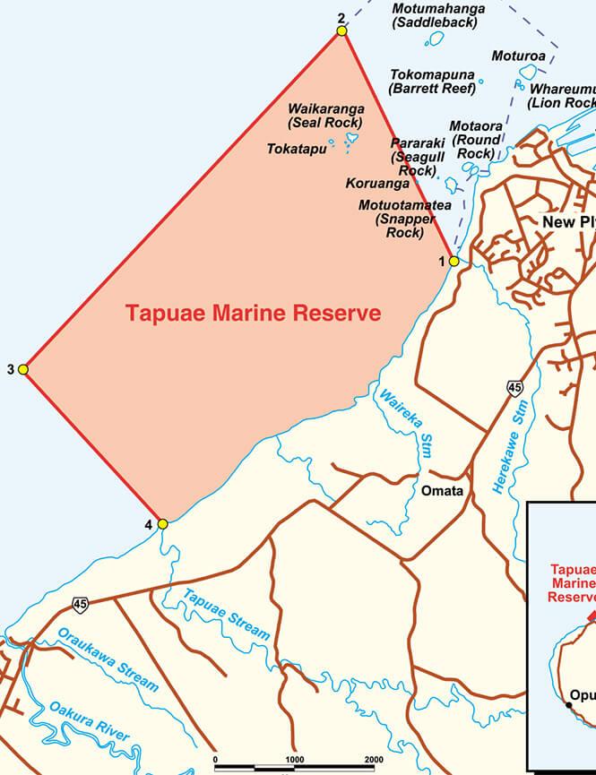 Taranaki Marine Reserve Snorkeling Map