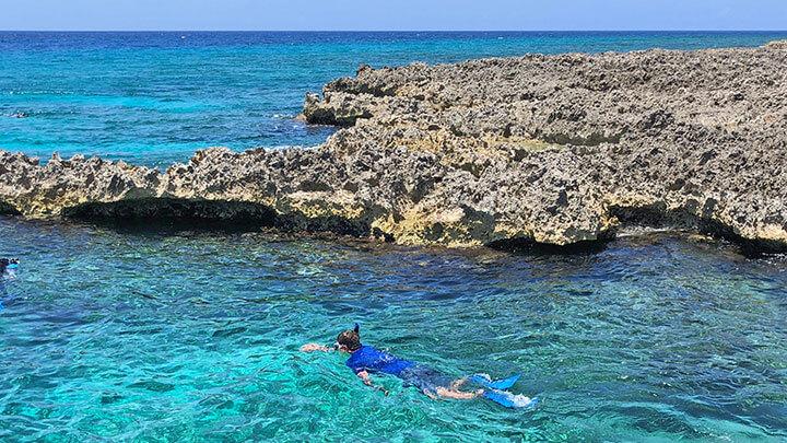 Turtle Reef Snorkeling Off Grand Cayman