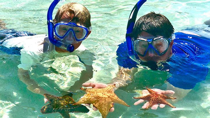 Starfish Point Snorkeling Off Grand Cayman