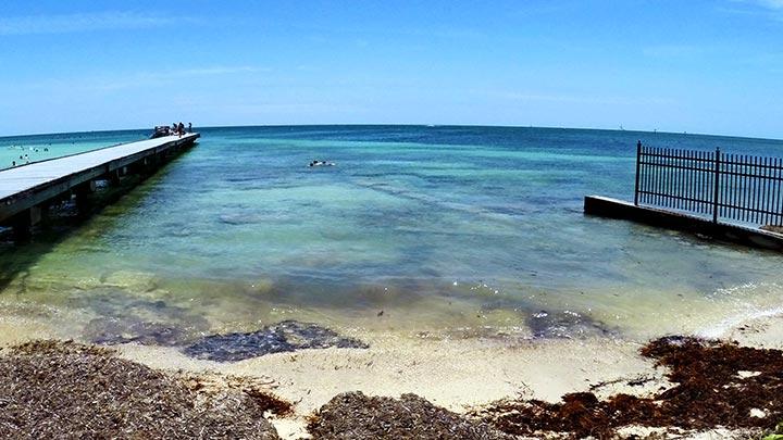 Photo Higgs Beach Snorkeling Off Key West