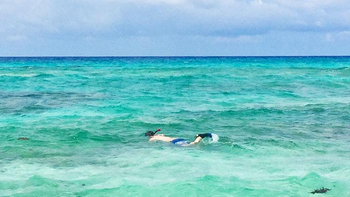 Snorkeling Malcolms Beach