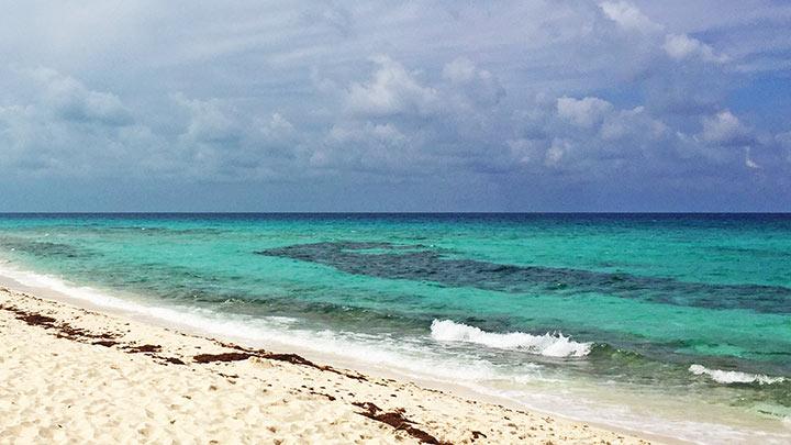 Malcolms Beach Snorkel Spot