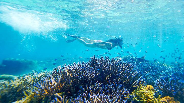 Snorkeling Mataray Island