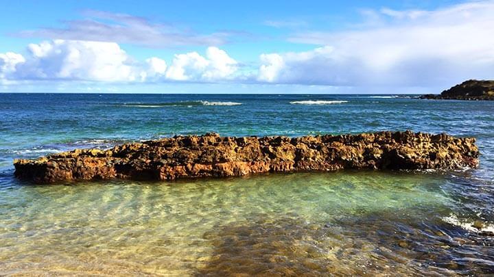 Snorkeling At Moomomi Beach On Molokai