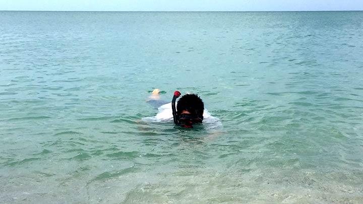 Snorkeling For Shark Teeth Off Venice (FL)