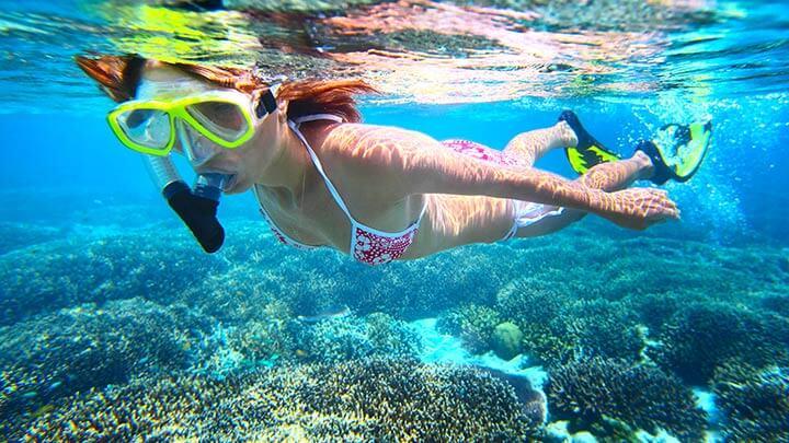 Best Snorkeling Dives Worldwide