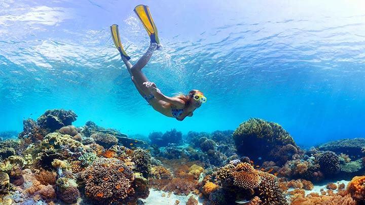 ...to snorkeling in Bora Bora
